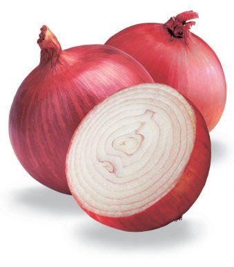 cebolla, la reina de las verduras (11)